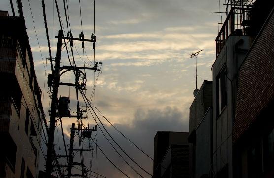 tsukiji1509