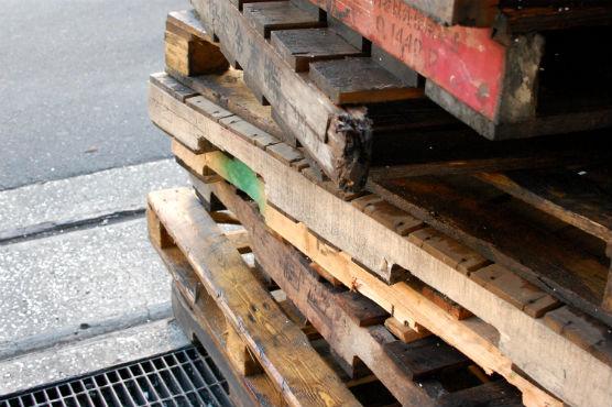 tsukiji150938