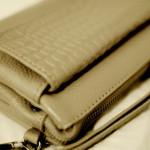 海外旅行に便利なバッグ、現金、カード、パスポートも入る。