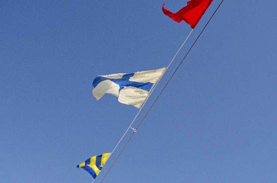 flag.min