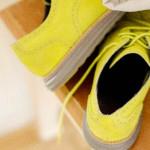 今日捨てたもの 8/15 靴べらを使った記憶はゼロに等しい。