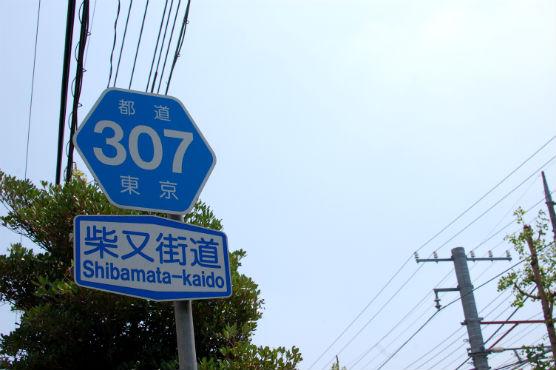 shibamata1508_5