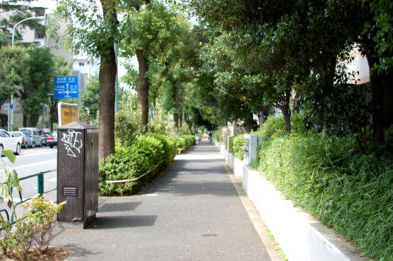 daikanyama20