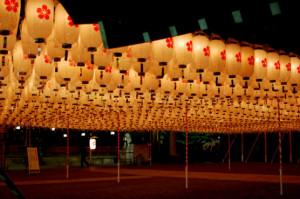 姫路護国神社新年万灯祭