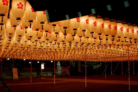 姫路護国神社新年万燈祭