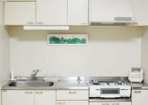 ミニマリストのキッチン