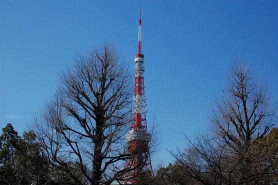 minatoku11