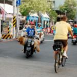 台湾は治安がいいから女性一人旅も安心?台湾一人旅のここが危ない。