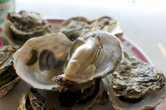 東石漁港で焼き牡蠣