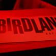 birdland_6