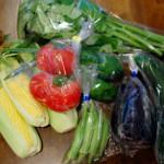 信州四賀 たべくら農園の無農薬夏野菜で贅沢晩酌。