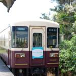 天竜浜名湖鉄道に大興奮 日本散歩・静岡県