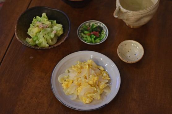 新玉ねぎと卵の炒めもの、キャベツのツナ和え献立。
